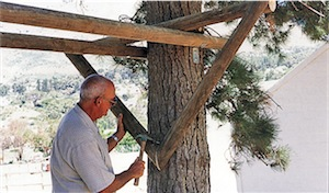 treehouse V-brace