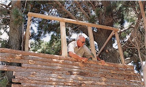 treehouse cladding