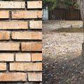 Tree Damage to Walls & Foundations – SANS10400-H Annex-D